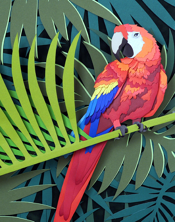 Parrot, paper sculpture © Denise Ortakales