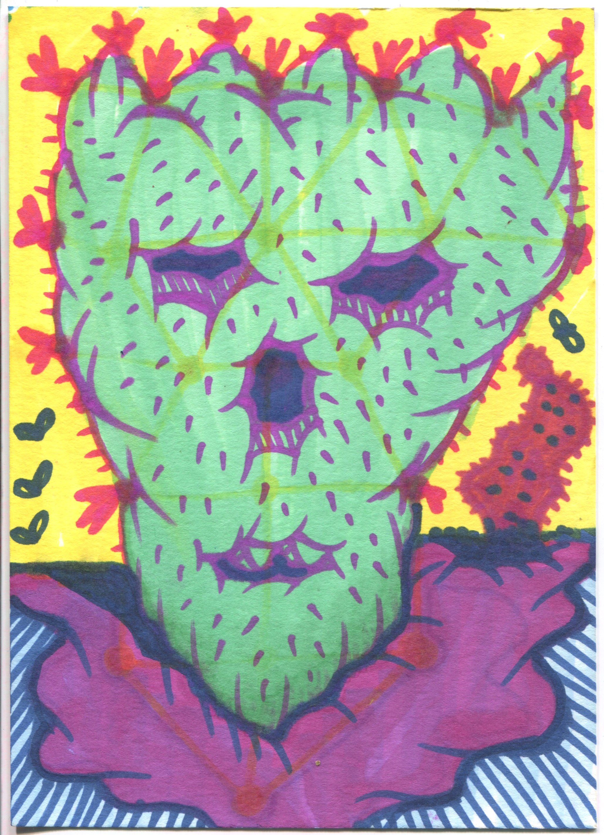 Cactus with Purple
