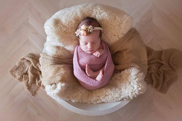 Avalon . . . . . . . . #baby #newborn #newbornphotographer #hillsnewbornphotographer #hillsbabyphotographer #sydneybabyphotographer #sydneynewbornphotography #sydneybabyphotography #picoftheday #instagood #babyphotography #sunlightphotography