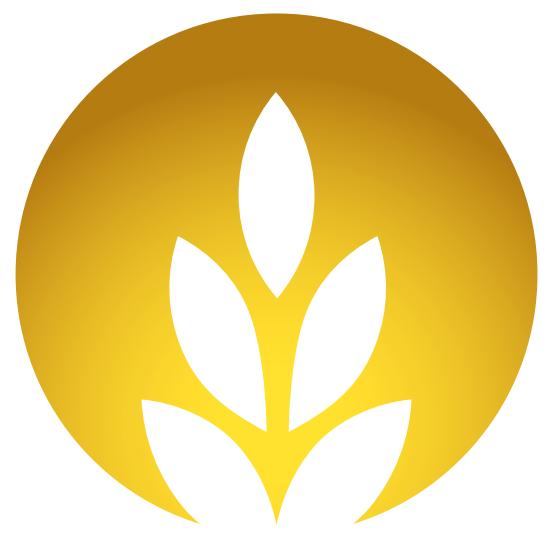 Rise Logo.png