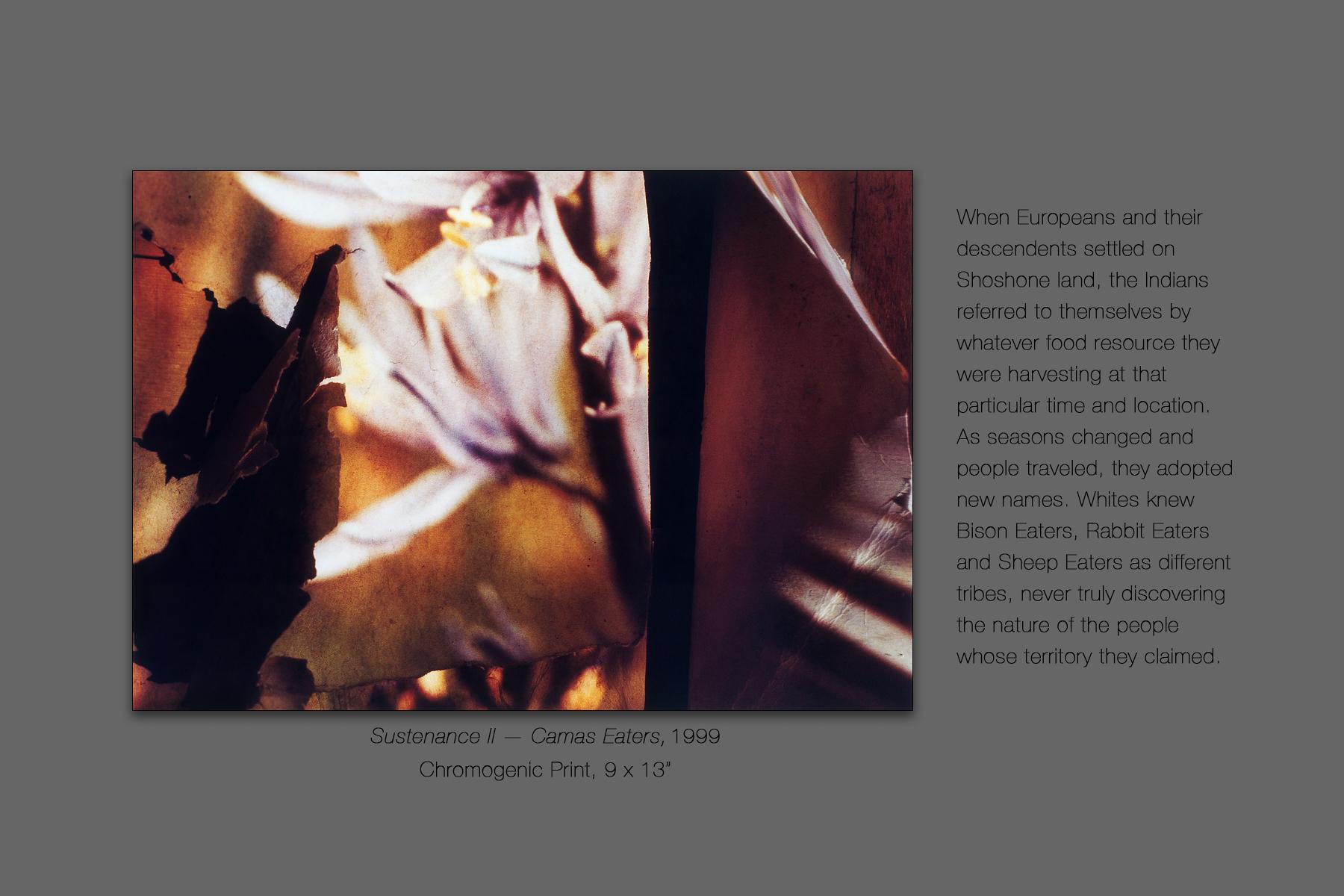 Sustenance II — Camas Eaters, 1999
