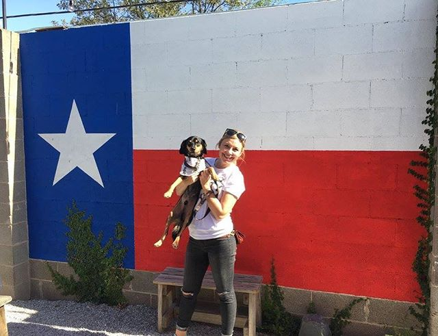 Happy Texas Independence Day y'all! This pup was adopted at one our volunteer outings last year ♥️ if we went back to walk dogs at @austinanimalcenter & grabbed drinks after, would you wanna go? . . . #texasforever #austinlife #austintexas #hillcountry #atxdrinks #atxevents #austindogs #caninesofaustin