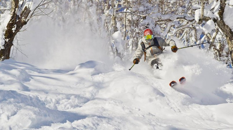 skiing-powder-japan-805x450.jpg