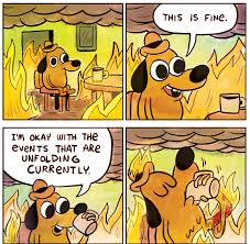 this is fine meme.jpg