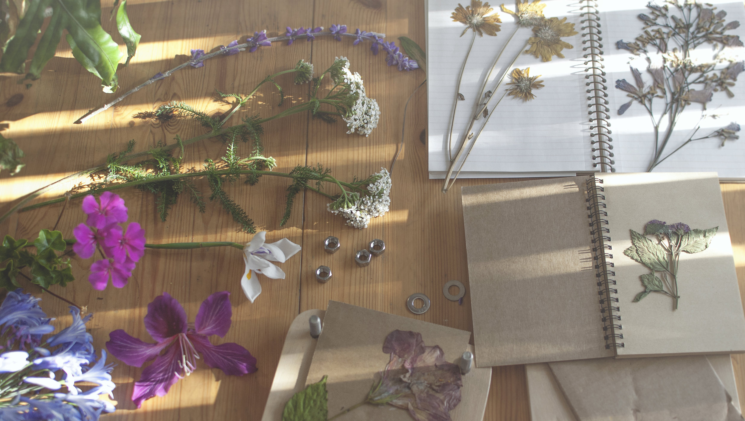 how to make flower pressings