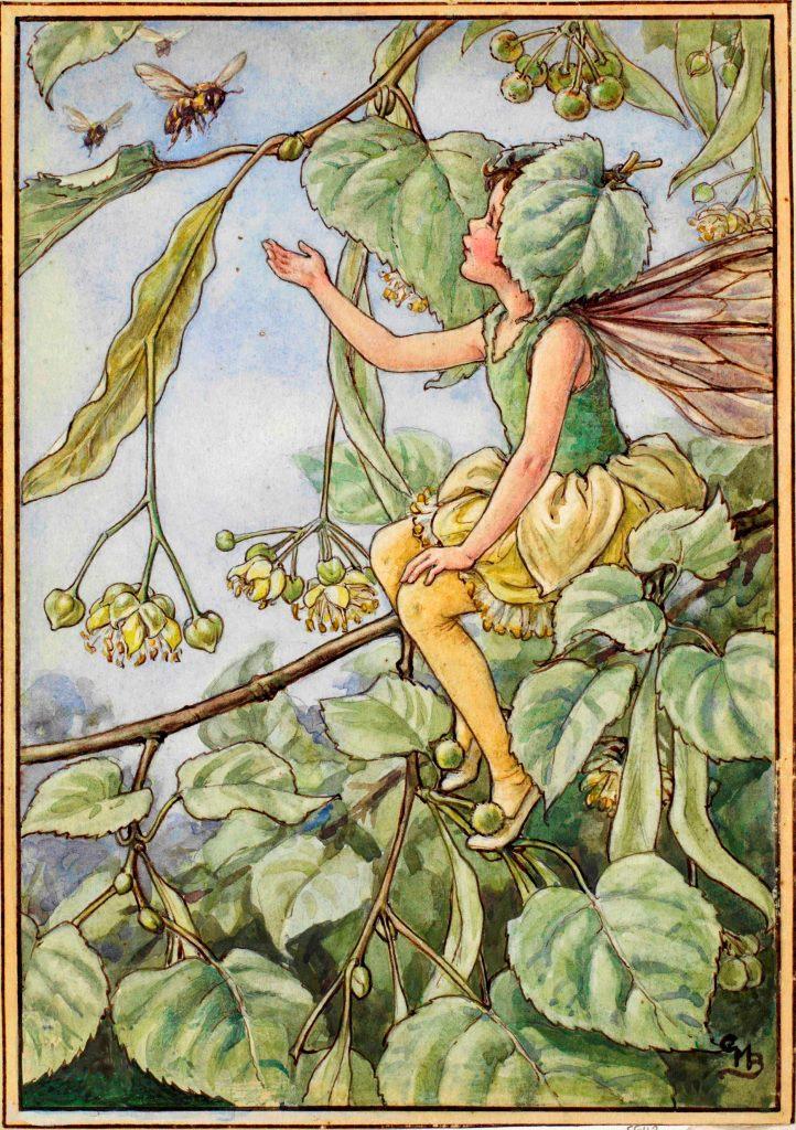 Lime Blossom Fairy