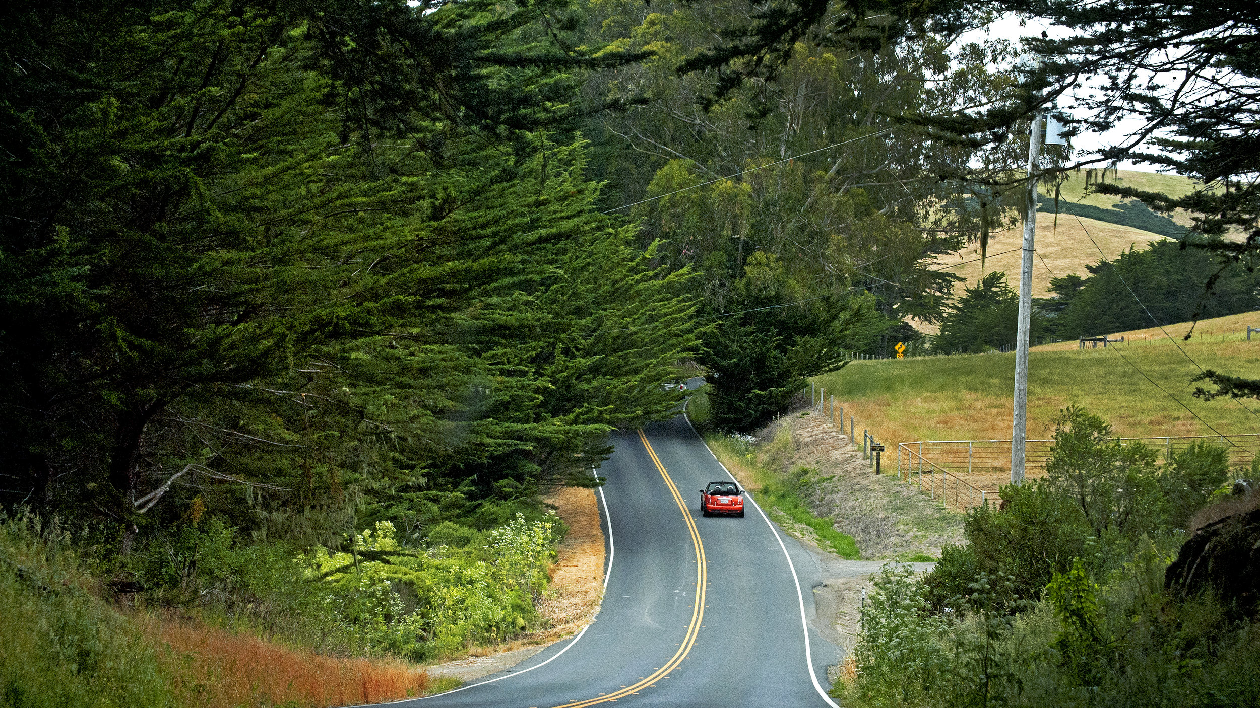 Scenic views along the Bodega Highway. Sebastopol is also linked to the Bohemian Highway, which leads up to the Russian River.