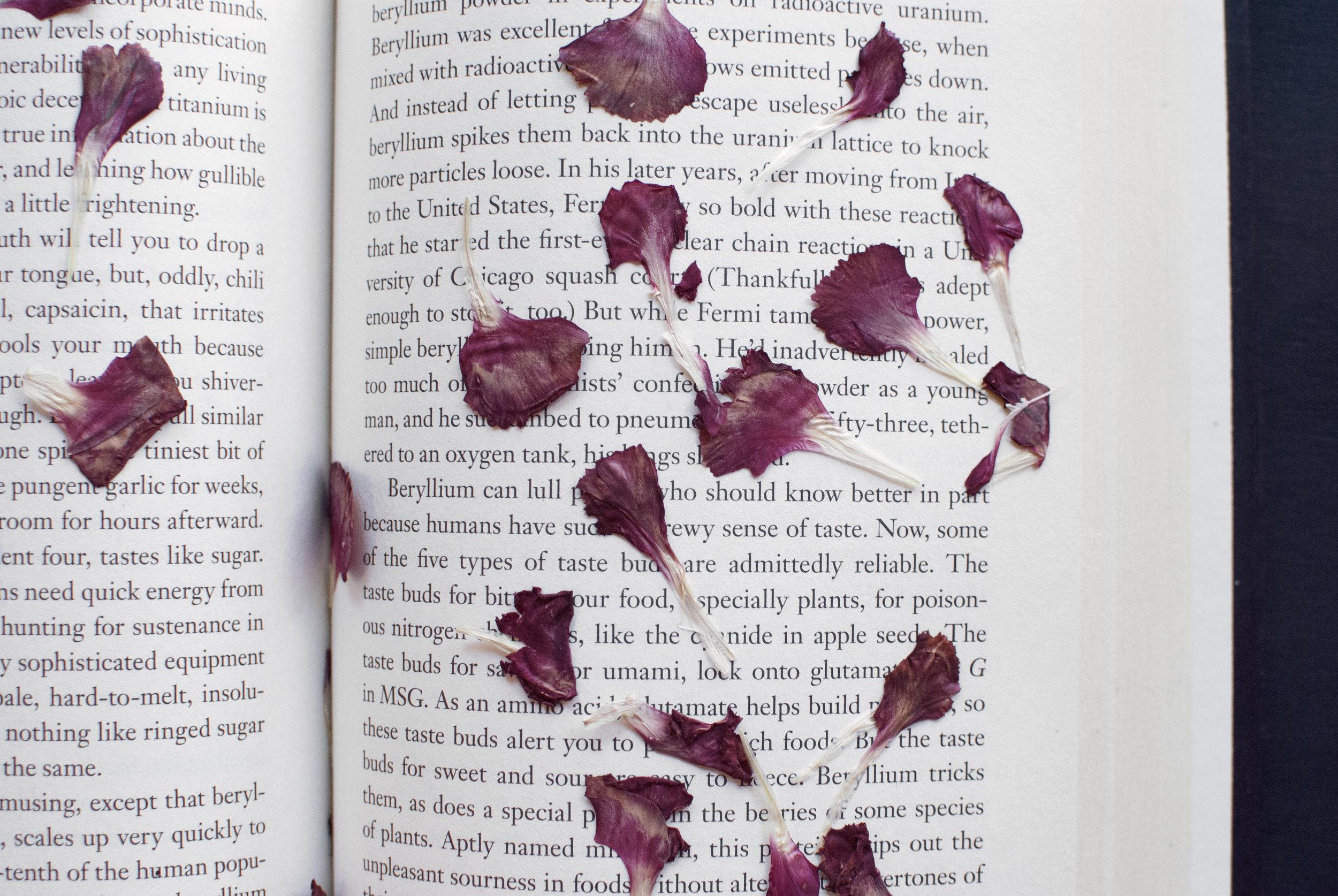 flowerpetalsbook.jpg