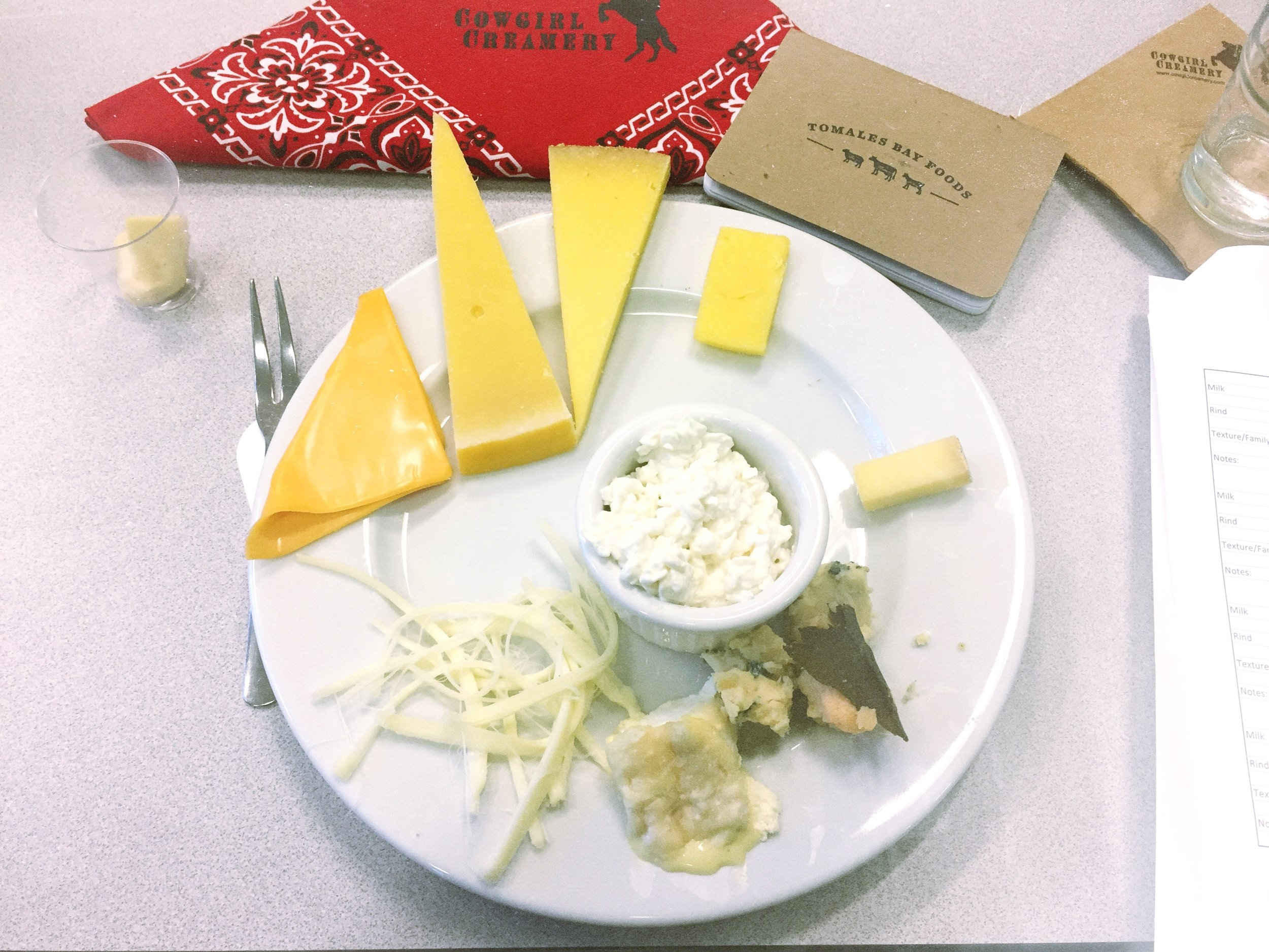 Cheese classification tasting plate. Yes, that is a Kraft single.