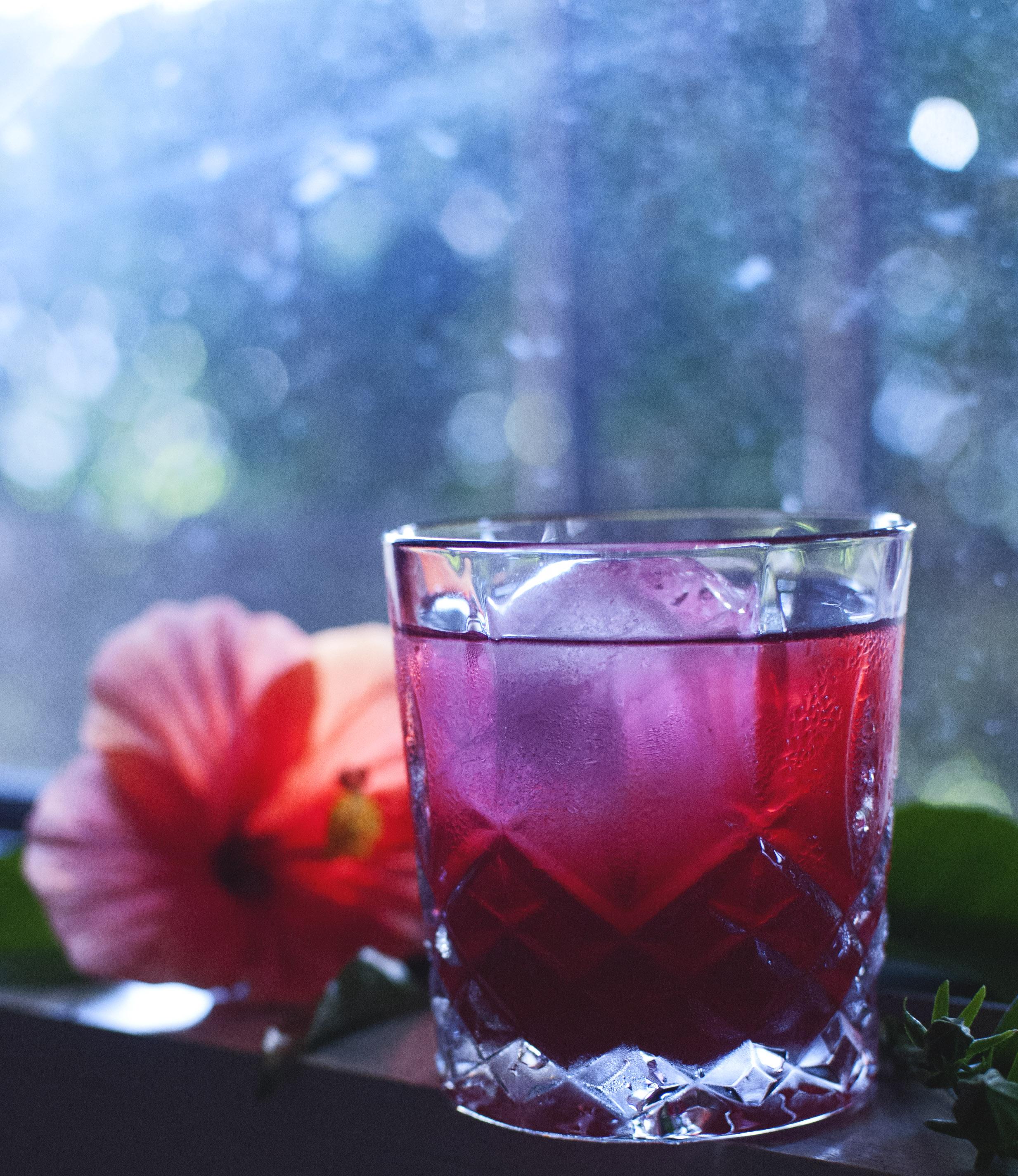 hibiscuselderflower4.jpg