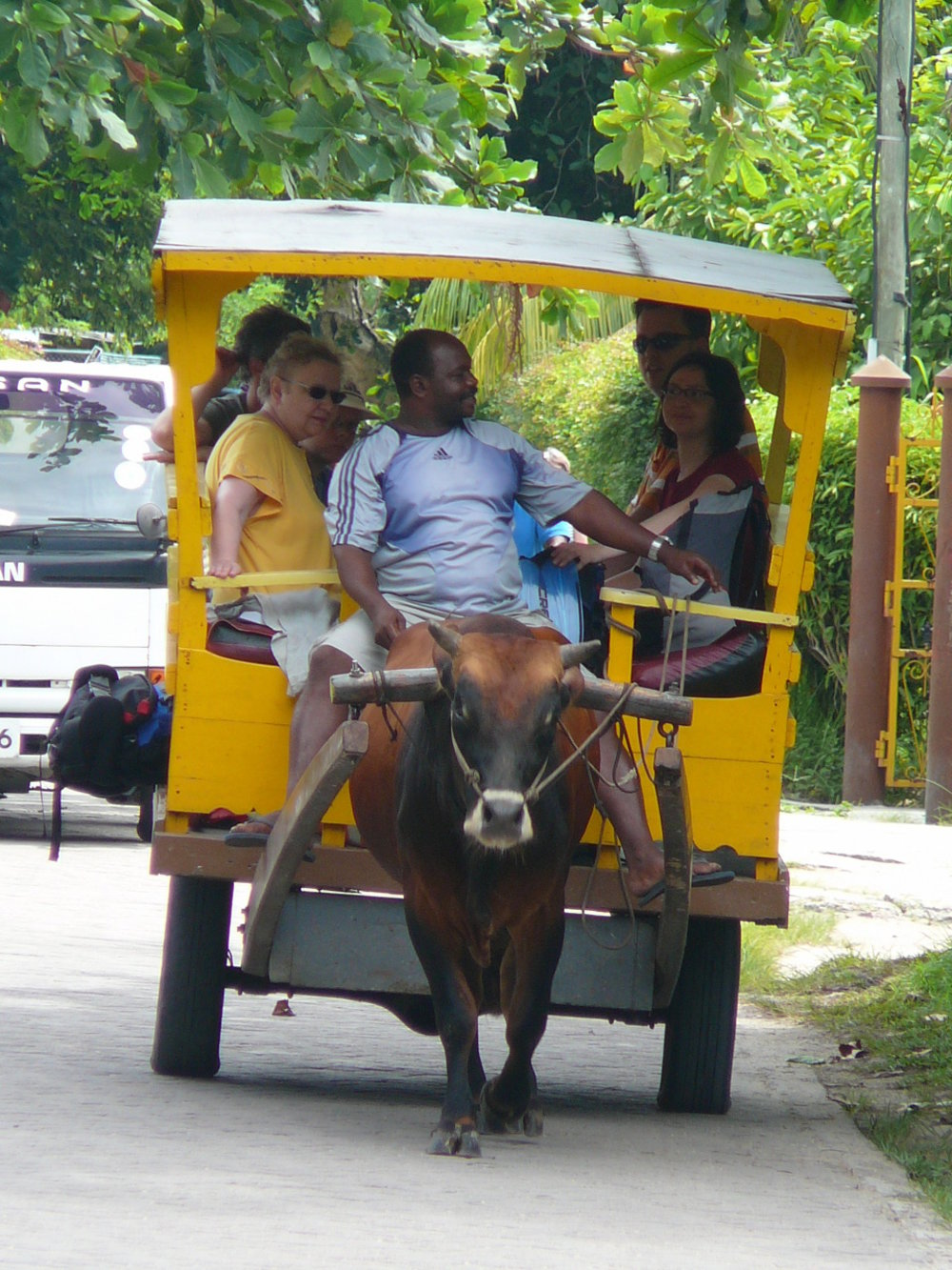 Seychelles- La-Digue-ox-wagon-tropical island
