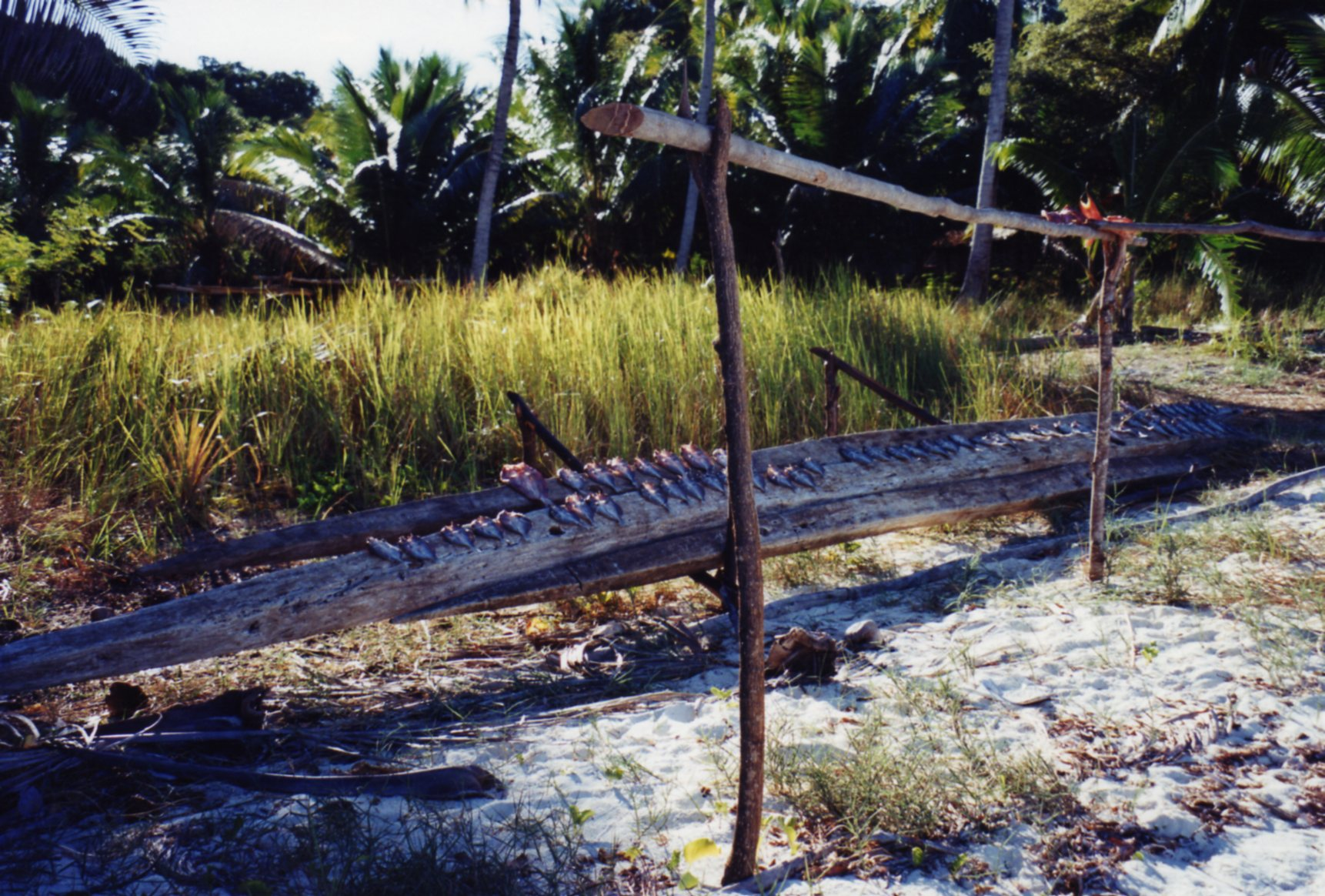 Fish drying at fishermen's village Nosy Iranja