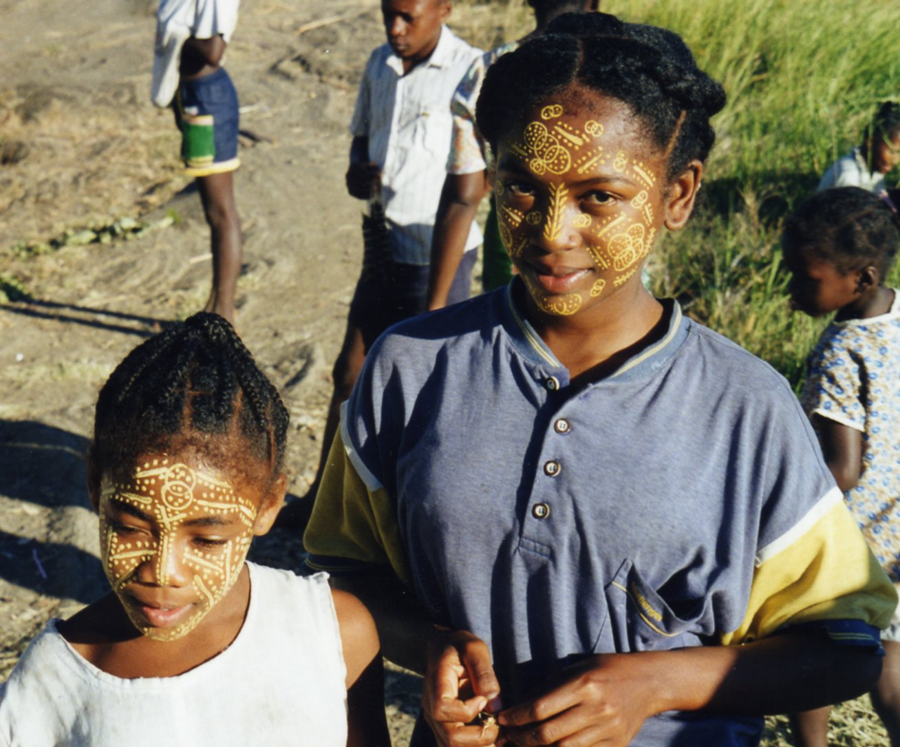 Blissful life on Madagascar islands was substituted for some mainland madness. -