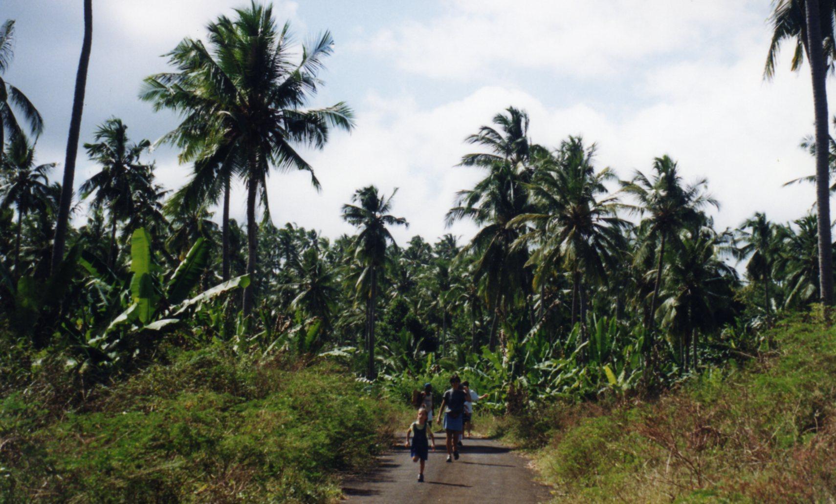 Exploring Moheli