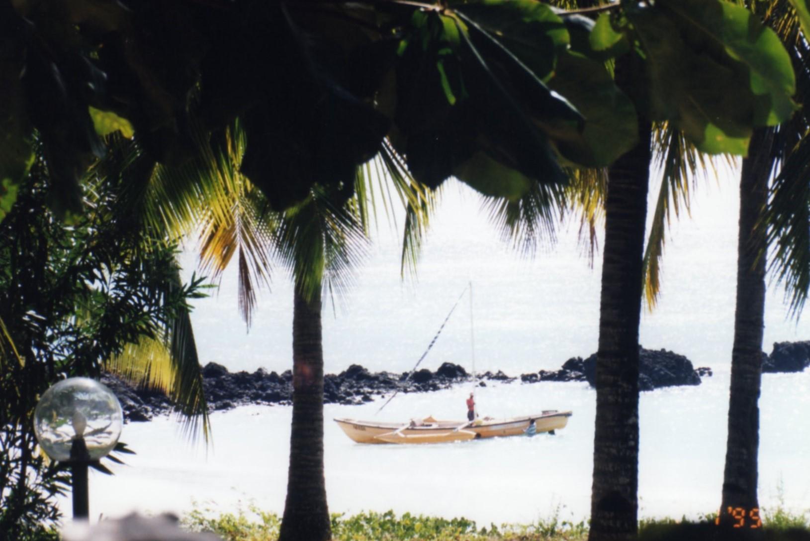 Pirogue through the palm trees