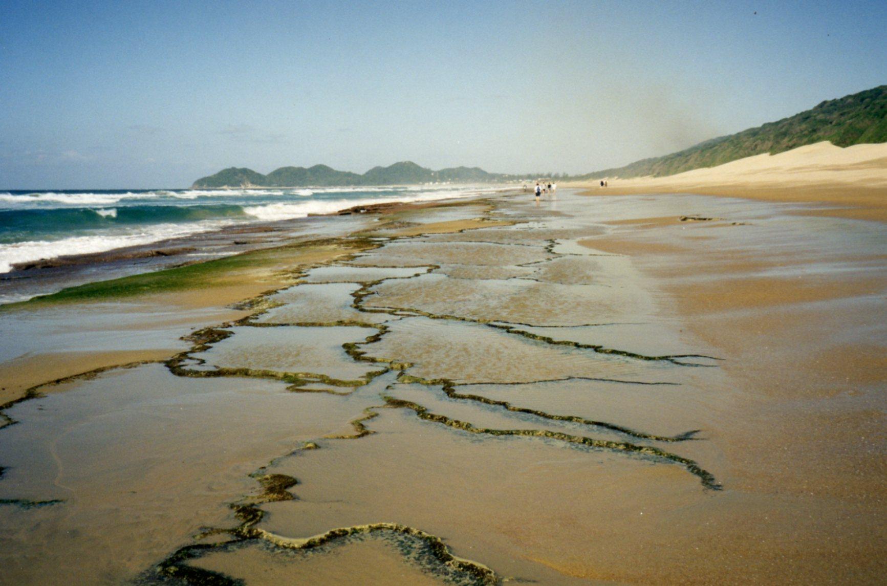 Rocks sticking through the sand