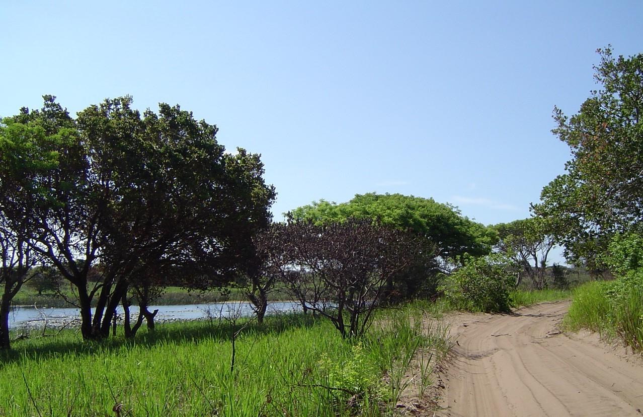 A smaller lake on the way to Ponta Mamoli
