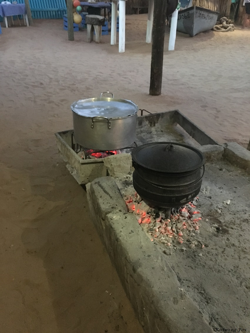 Cooking Potjie Roaming Fox.JPG