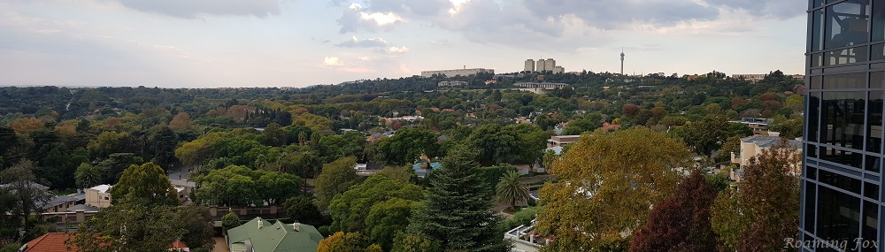 Towards Parktown ridge