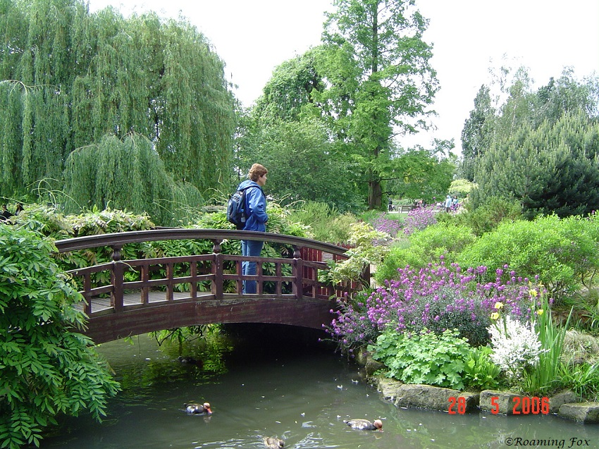 Admiring the gardens in the parks of London