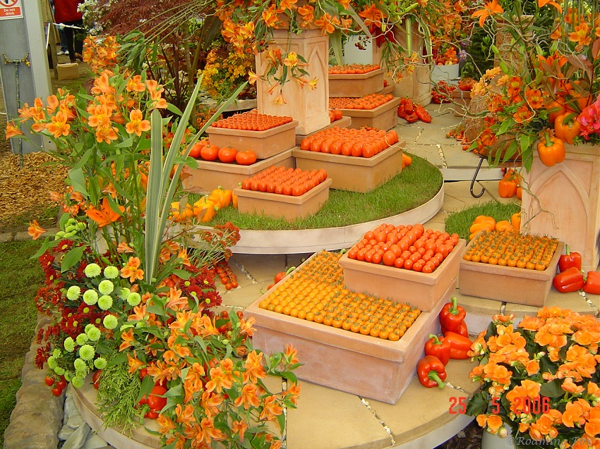 Orange Vegetable and Flower display Chelsea Flower Show 2006.JPG