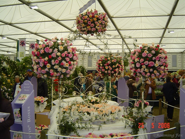 Rose display Chelsea Flower Show 2006.JPG