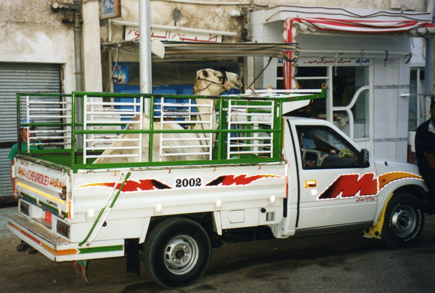 How to transport a camel