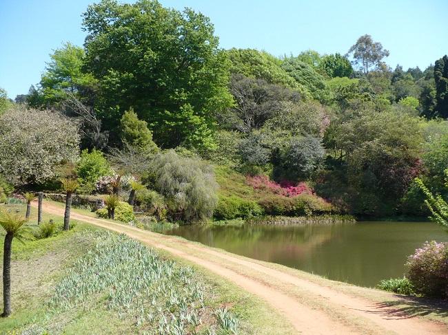 Cheerio gardens 2.JPG