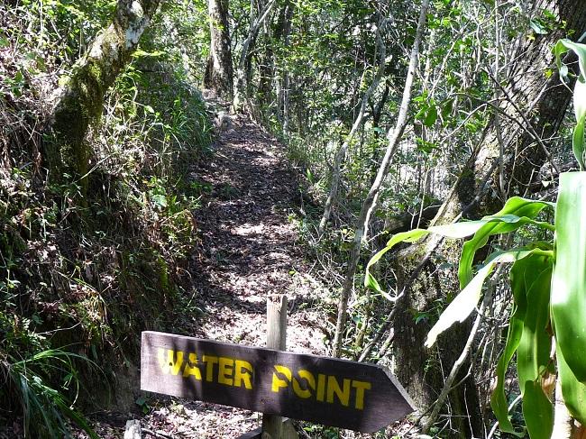 Waterpoint Magoebaskloof zipline.JPG