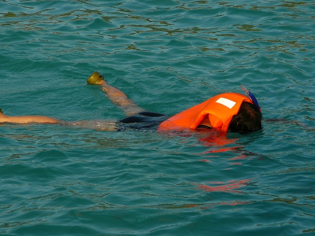 Snorkeler with life jacket Maldives.JPG