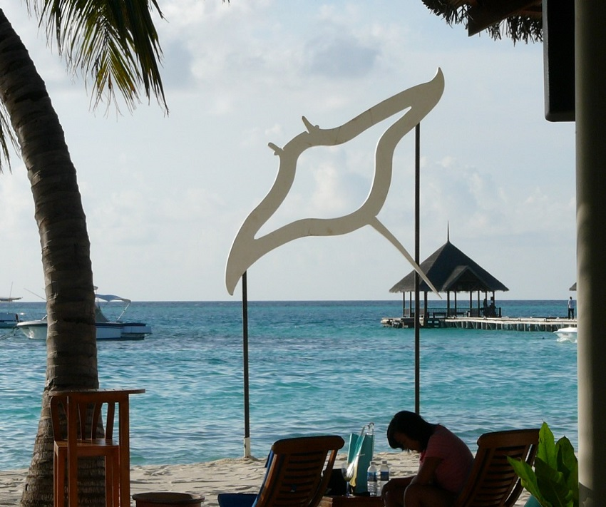 Manta ray decor Maldives.JPG