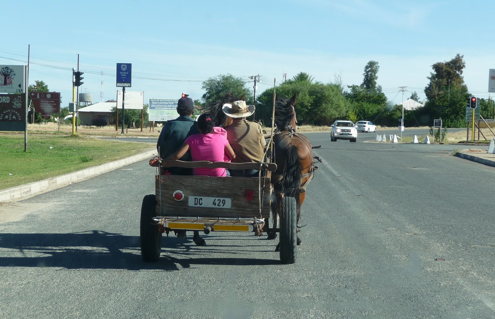 Not an unusual sight in the Northern Cape