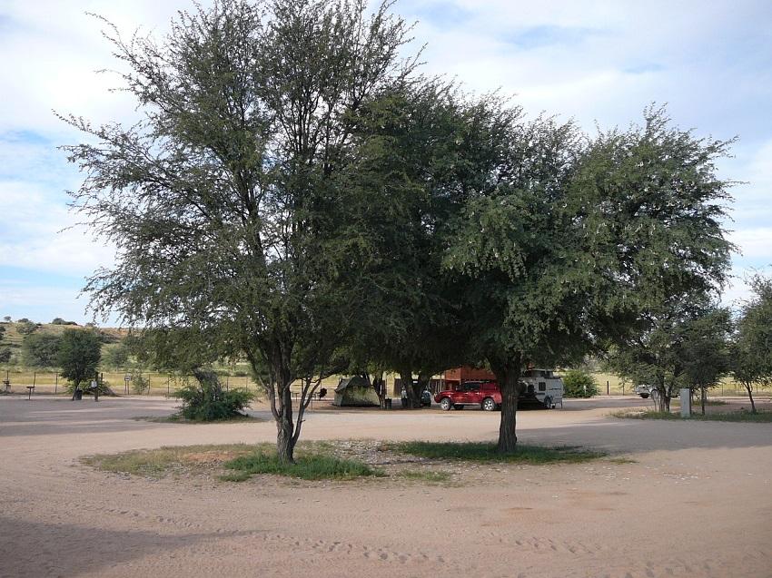 Campsite Mata Mata Kgalagadi Transfrontier Park