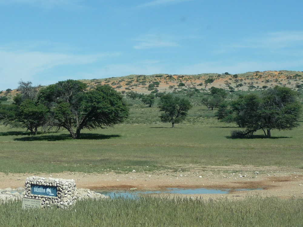 Dalkeith waterhole Kgalagadi Transfrontier Park