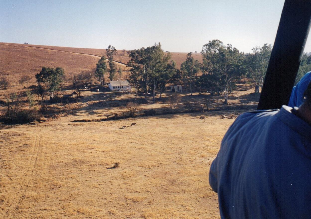 I think I spotted a rhino!