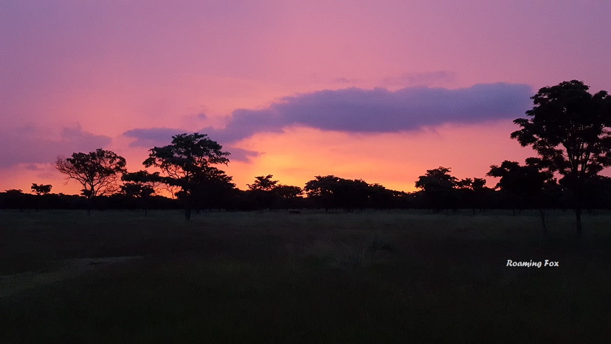 Sunset in the Waterberg, South Africa