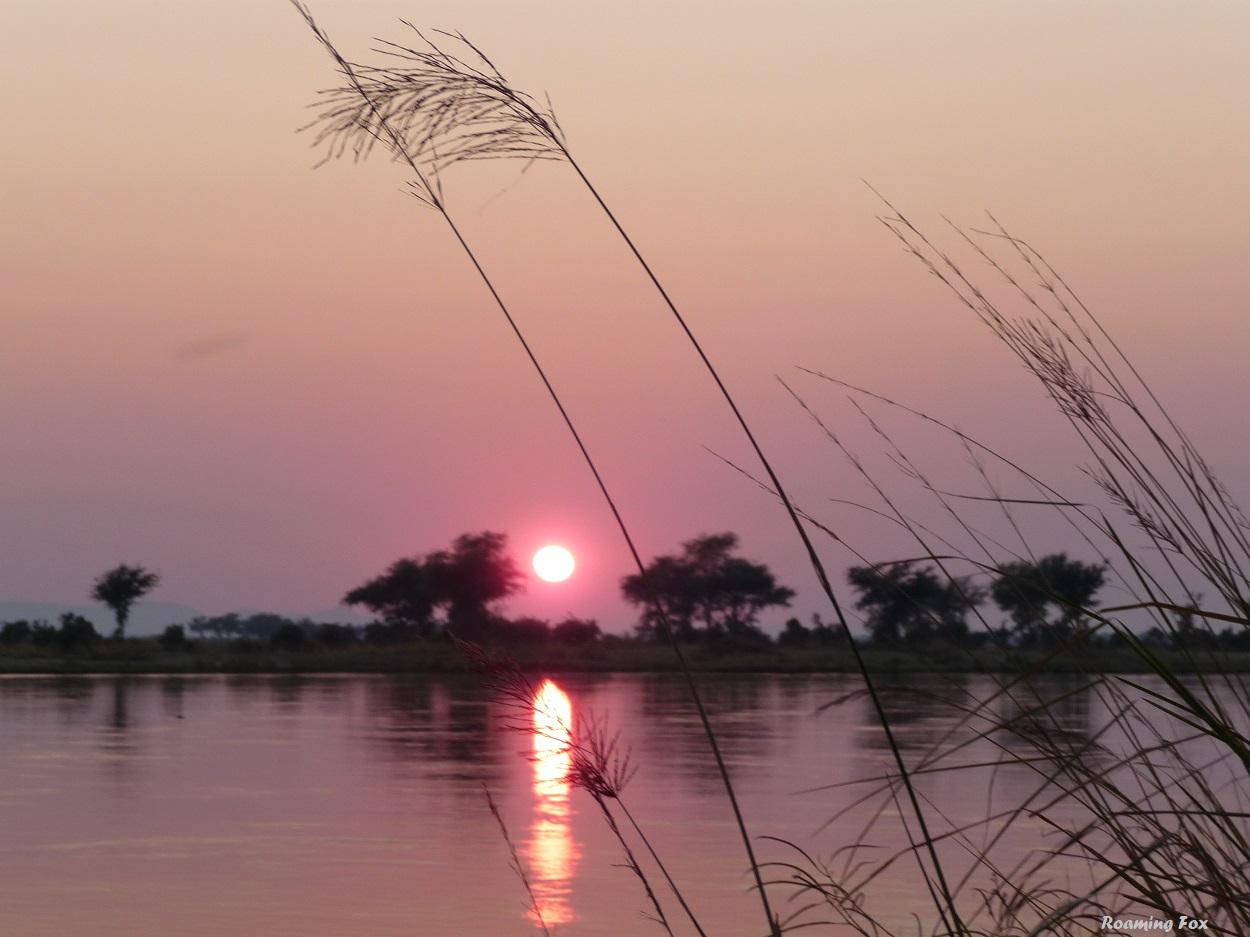 Reflection of the sun on the mighty Zambezi river, Mana pools, Zimbabwe