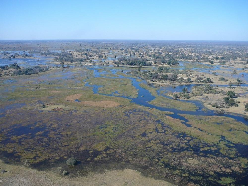 Vast expanse Okavango.JPG