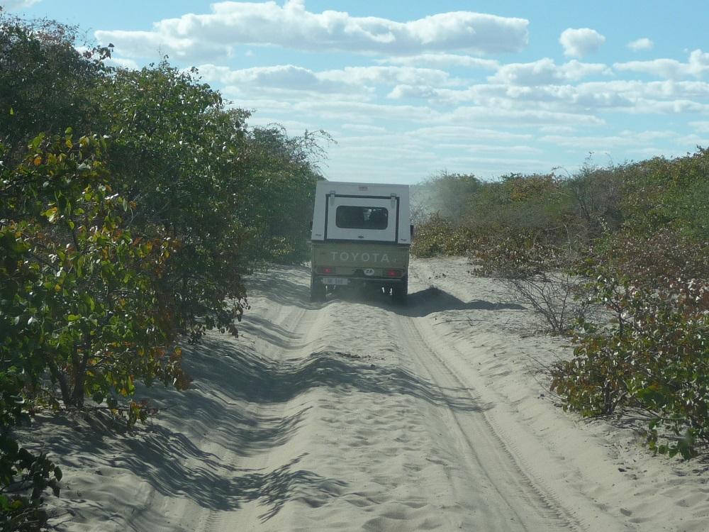 www.roaming-fox.com road to Kubu island.JPG