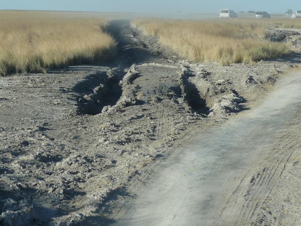 www.roaming-fox.com gouged mud Mkgadikgadi.JPG