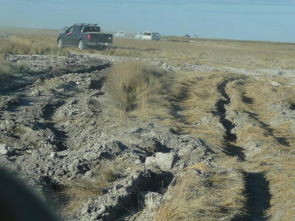 www.roaming-fox.com Mkgadikgadi tracks vehicles stuck.JPG