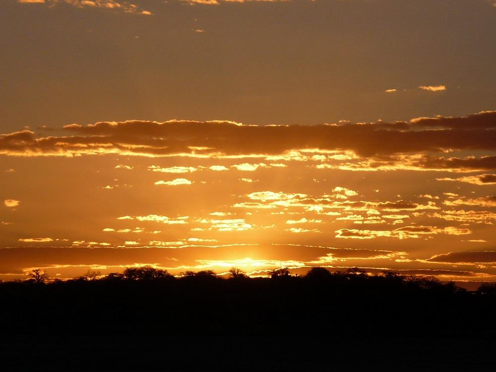 Golden colours of sunset