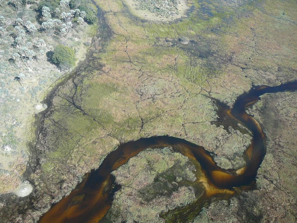 Canal from air Okavango www.roaming-fox.com.JPG