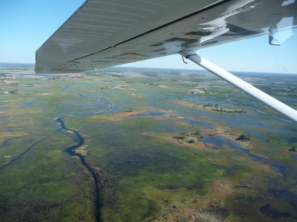 Flight over Okavango www.roaming-fox.com.JPG