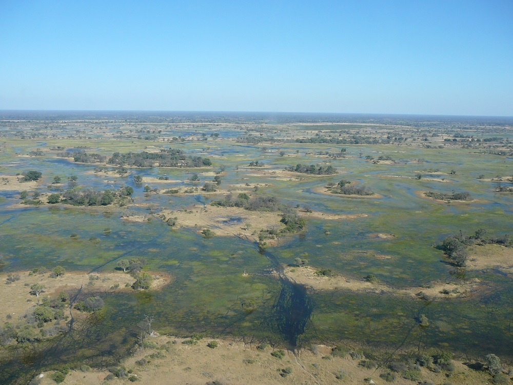 Okavango from air www.roaming-fox.com.JPG