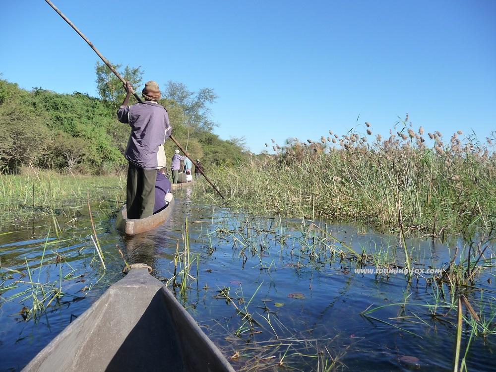 www.roaming-fox.com Mokoro and punter Okavango Delta.JPG