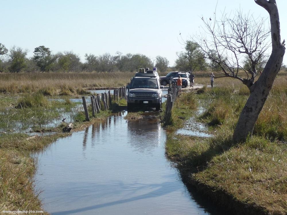 www.roaming-fox.com Driving through water at bridge Moremi.JPG