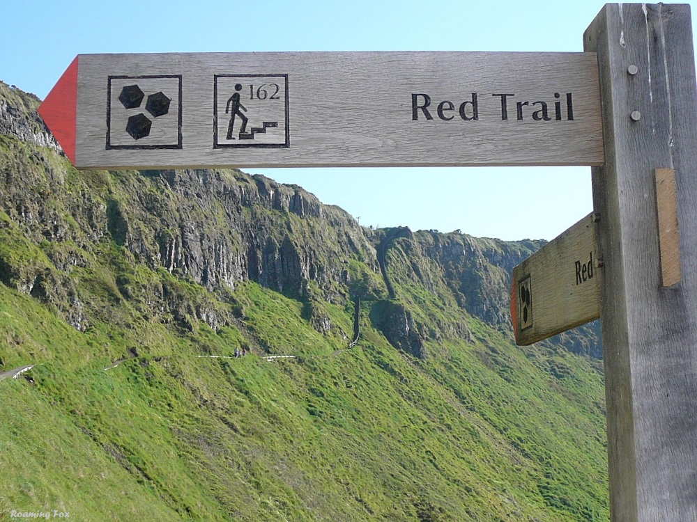 Red Trail and steps at Giant's Causeway.JPG