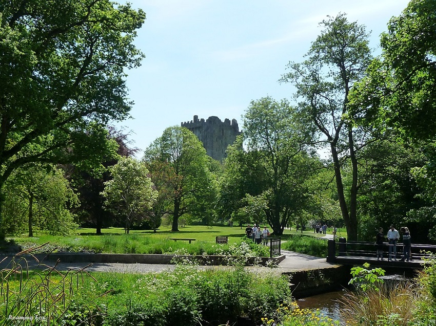 Beautiful gardens at Blarney Castle