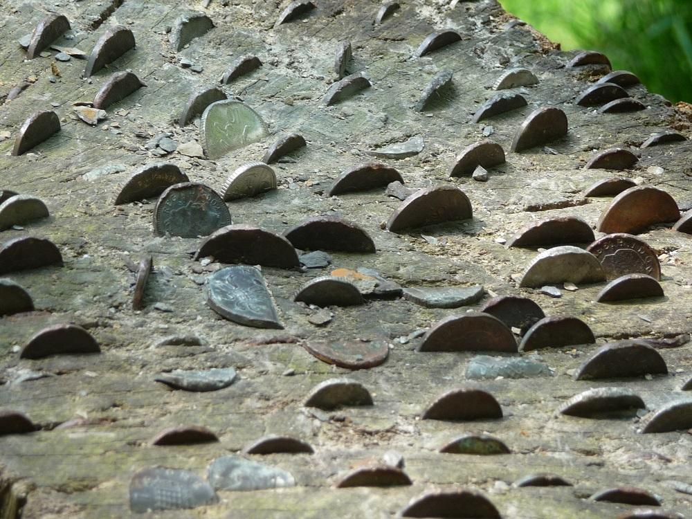 RF Coins in log Lake Windermere.JPG